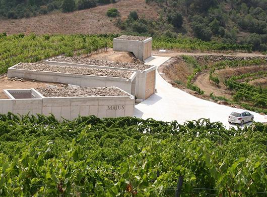 Maius Viticultors, SCP